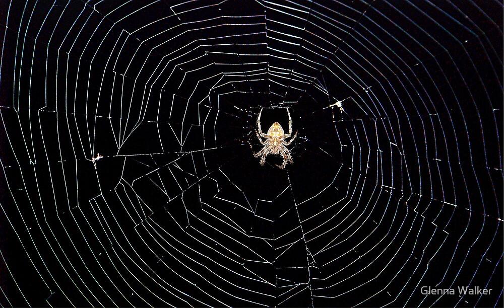 Charlotte's Web by Glenna Walker