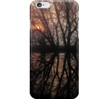 Misty Mystery iPhone Case/Skin