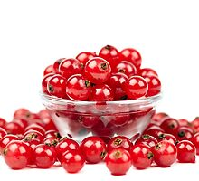Redcurrant over white background by naturalis