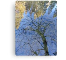 Tree and Sky Reflections Canvas Print