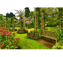 Impressions of London - Queen Mary's Rose Garden Photographic Print