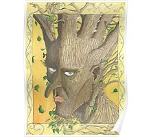 Potrait of an adolescent Tree-man Poster