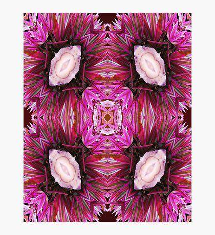Venusians Blend Photographic Print