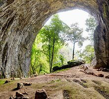 Inside view from Meziad cave in Apuseni mountains by naturalis