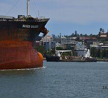 NAVIOS GALILEO COAL CARGO SHIP by Phil Woodman