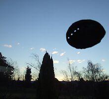 UFO Paua by DriftwoodArt