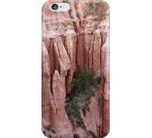 Red Ravine from the Carpathian mountains iPhone Case/Skin