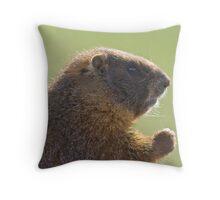 Threatening Marmot Throw Pillow