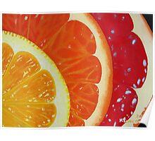 Citrus Hue Poster