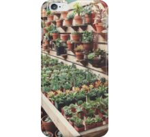 Succulent & Cactus Shop iPhone Case/Skin