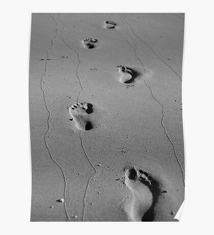Footprints & Photographs Poster