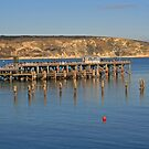 Swanage Pier & Ballard Down by RedHillDigital