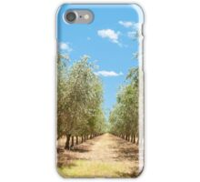 Rows of Olives iPhone Case/Skin