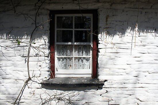 Bunratty cottage window by John Quinn