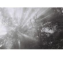 Rays Photographic Print