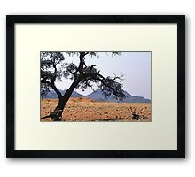 Oryx hiding fro the midday sun Framed Print