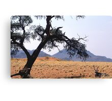 Oryx hiding fro the midday sun Canvas Print