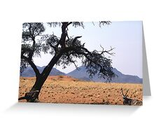 Oryx hiding fro the midday sun Greeting Card