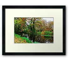 River Wandle in Autumn, Morden, England Framed Print
