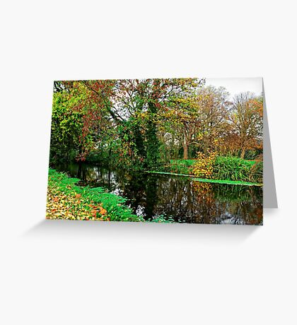 River Wandle in Autumn, Morden, England Greeting Card