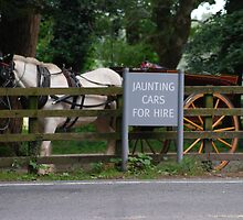 JAUNTING CARS  by TIMKIELY