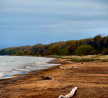 Point Pelee by Barry W  King