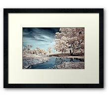 Dam Reflections Framed Print