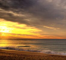 Waiting For The Dawn - Palm Beach - Sydney Beaches - The HDR Series by Philip Johnson