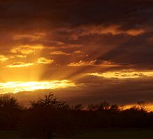 Dramatic Skies at Dusk Over South London, England by atomov