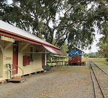 The End of the Line. Historic Kandanga Station, Mary Valley. QLD by Rita Blom