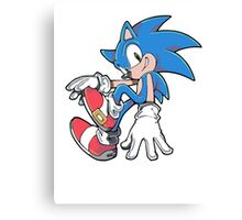 Sonic Sitting Canvas Print