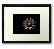 Alone ! Framed Print