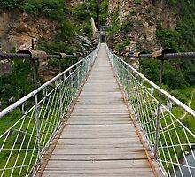 Bridge by dominiquelandau