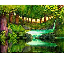 FOREST POOL Photographic Print