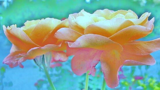 Pastel Colours by HELUA
