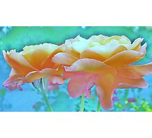 Pastel Colours Photographic Print