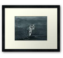 Midnight Stroll Framed Print