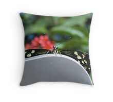 Hello There Flutterby Throw Pillow