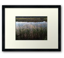 Tidal Summer  Framed Print