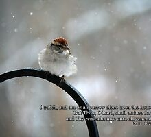 I watch, and am as a sparrow alone by WalnutHill