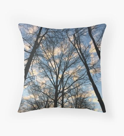 First day of Winter  Throw Pillow