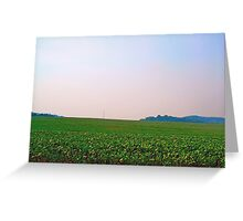 Wide Open Greeting Card