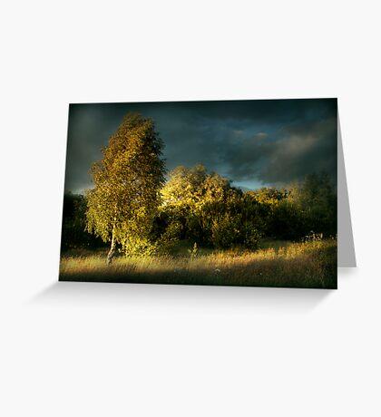 Nature Reserve Greeting Card