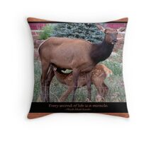 Every Second Throw Pillow