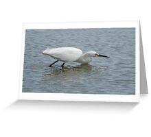 Snowny Egret 1 Greeting Card