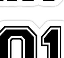 Class of 2015 Sticker