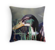 DRAKE MALLARD Throw Pillow