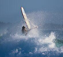 Wipeout! by David Mapletoft