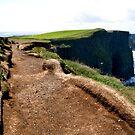 Cliffs of Moher by Maureen  Geraghty