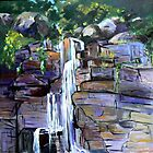 Cameron Fall Tamborine Mountain by Virginia McGowan